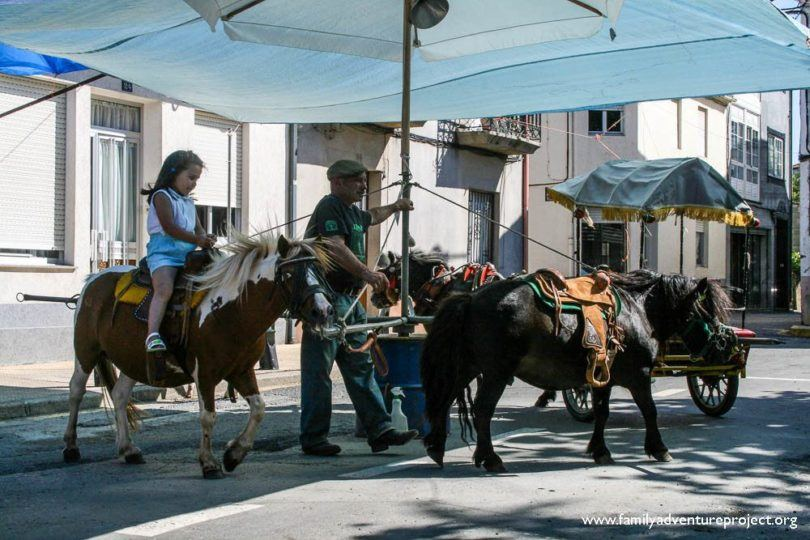 Donkey Riding Melide, Spain