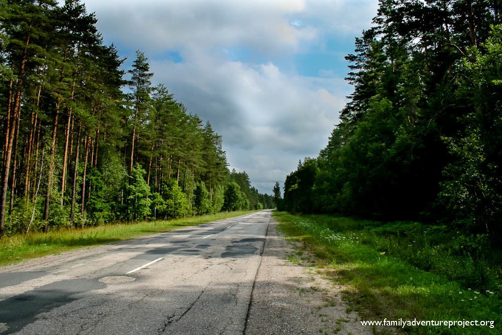 Cycling in Latvia Forests