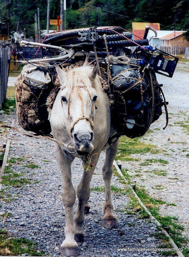 Bikes on Horseback Patagonia