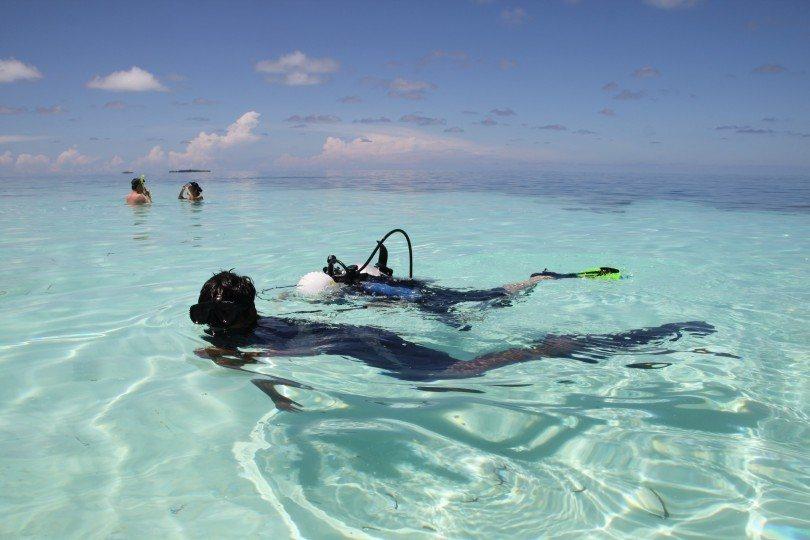 Diving lesson kids