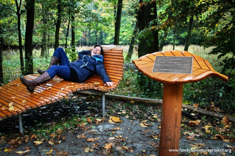 Eifel National Park Zen Bench