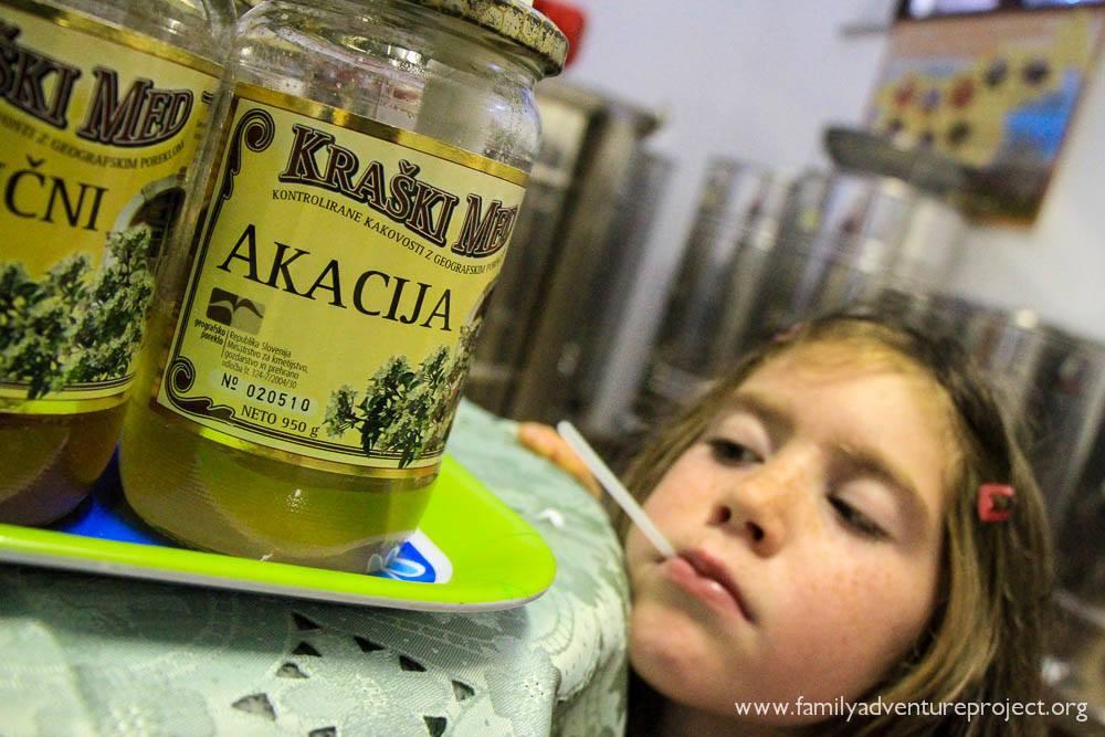 Honey tasting in Pliskovica