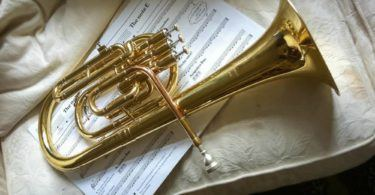 Tenor Horn with music