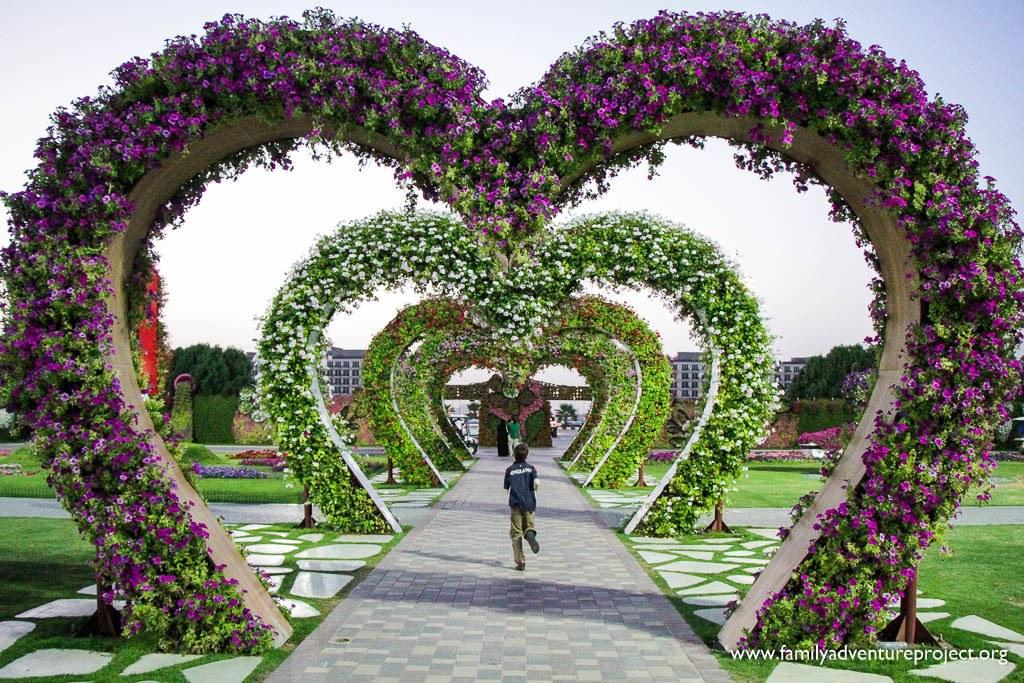 Dubai Miracle Garden Dubailand