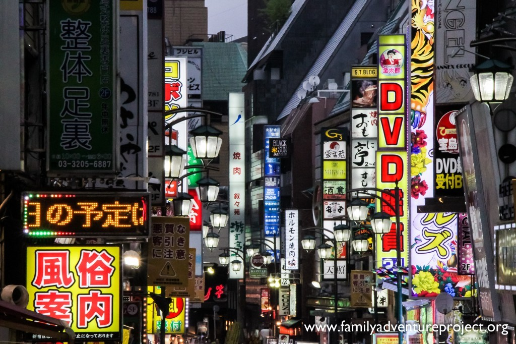 Tokyo Neon in the Shinjuku District at Night