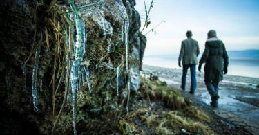 Icicles on Winter Walk in Arnside