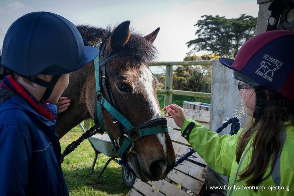 Meet the horses at St Mary's Riding Centre, Isles of Scilly