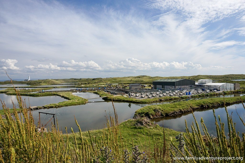 Oyster Farm at South Walney Nature Reserve