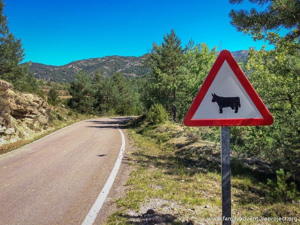 The road to Laguarda and Col de Serrablo