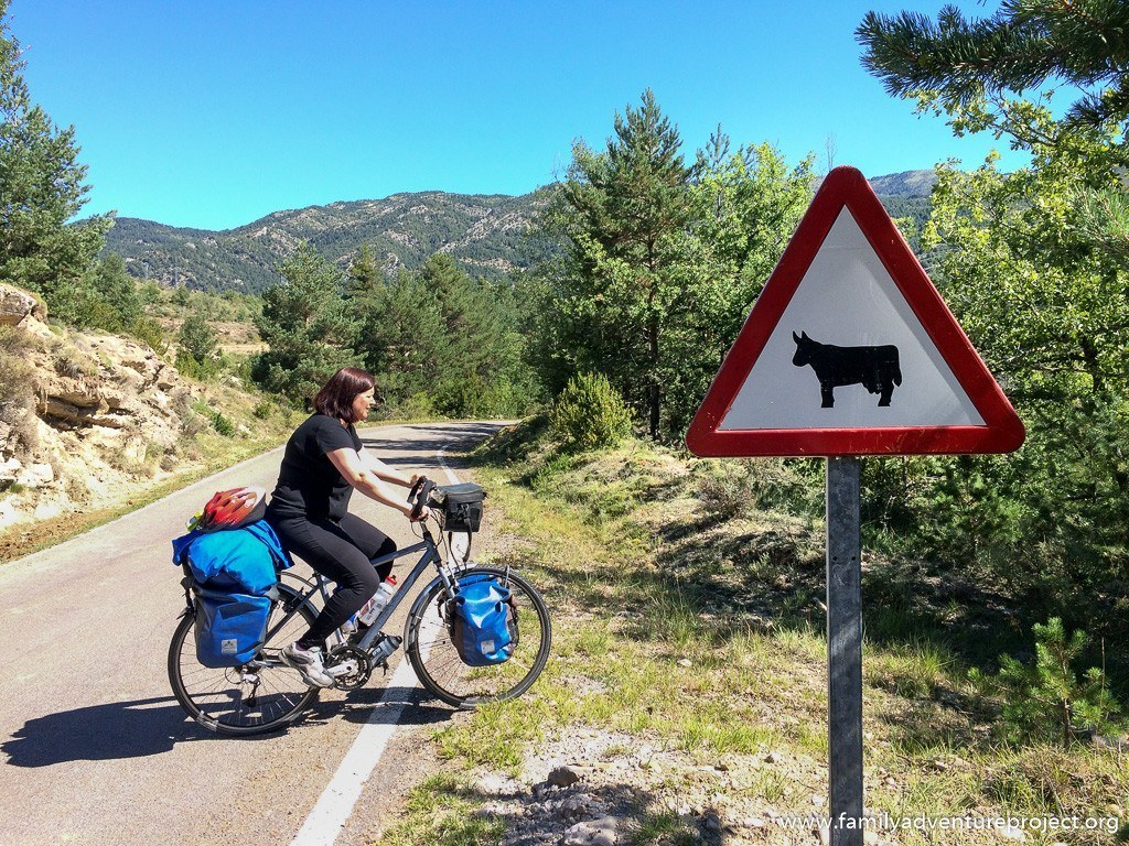 Cow sign in Pyrenees