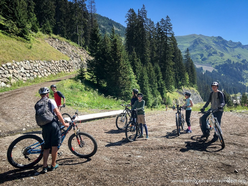 Mountain biking on forest trails at Flaine