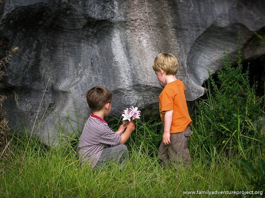 Boys looking at karst and flowers in New Zealand North Island