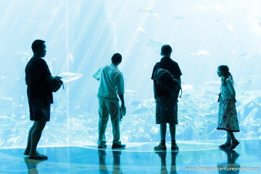 Cleaning the aquarium in Atlantis the Palm, Dubai