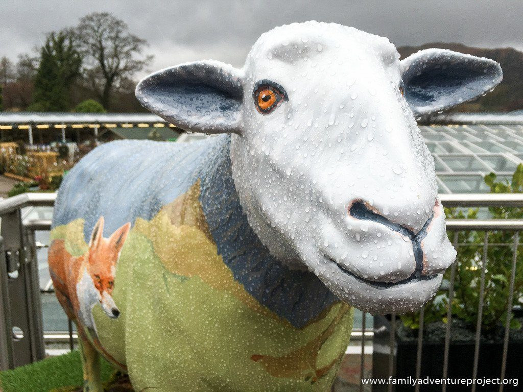 Frankie Cranfield's Ms Todd, one of the #GoHerdwick sheep in the Lake District