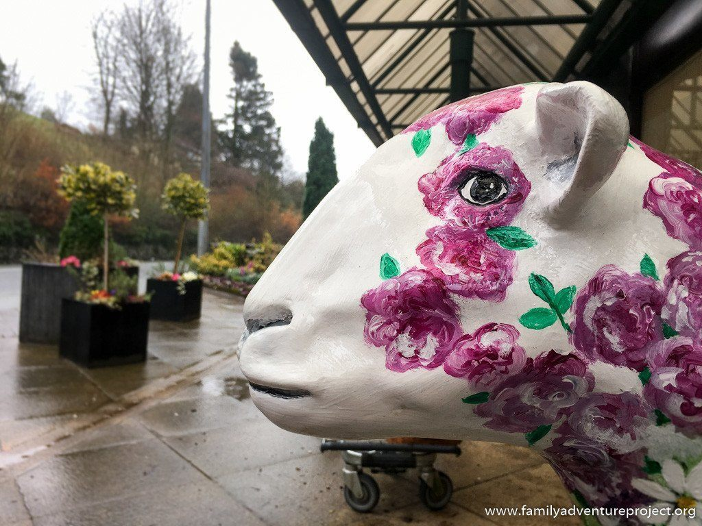 Rosie, one of the #GoHerdwick flock, decorated by Jayne Lancaster installed outside Hayes Garden Centre