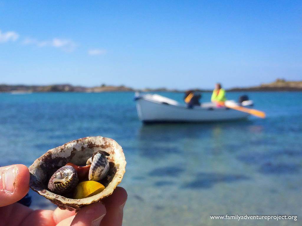 Shell collecting on the Scilly Isles