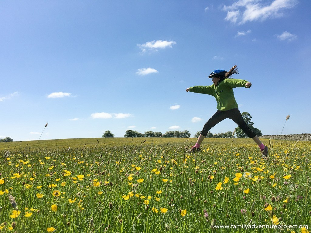 Bounding through buttercups near Cowan Bridge