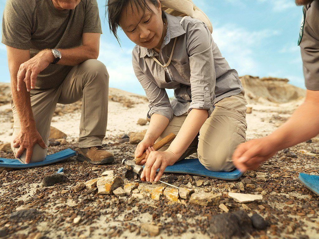 Digging for fossils at Dinosaur Provincial Park. Image Travel Alberta/Roth & Ramberg
